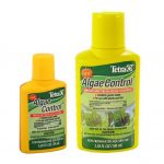 Algae bloom control for aquariums